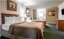 Quality Inn & Suites Maingate Room - Three Queen