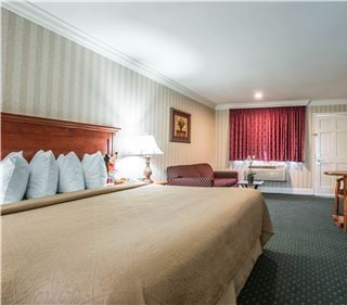 Photo Gallery of Quality Inn & Suites Maingate Anaheim