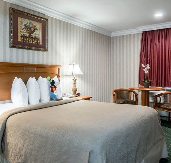 Queen Bed from Quality Inn & Suites Maingate